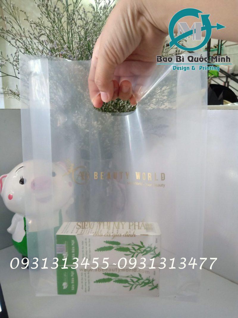 In túi nilong đa dạng kích thước tại TPHCM